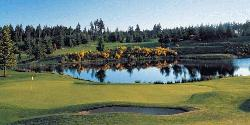 Gold Mountain Golf Course - The Olympic